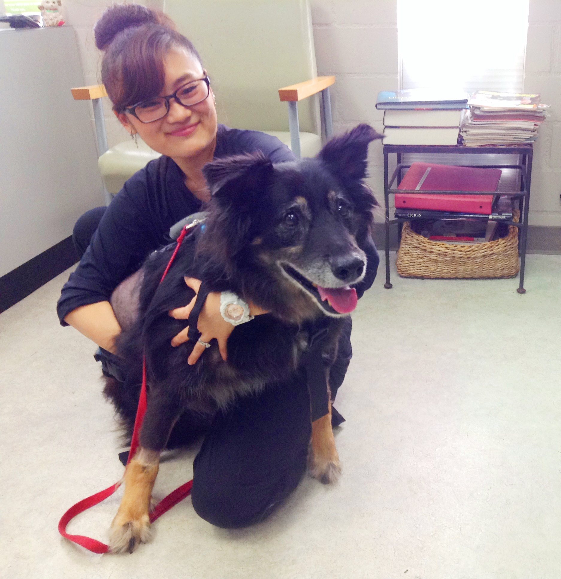 Two hands four paws meet our team two hands four paws nami sugiyama xflitez Images