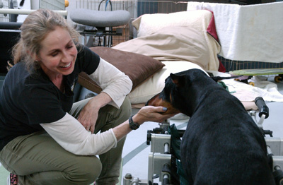 Leslie Gallagher Two Hands Four Paws