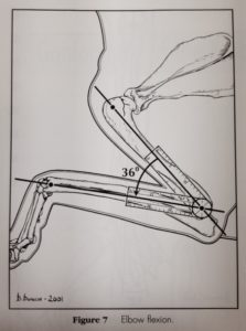 Elbow flexion from book