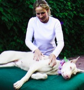 Leslie Two Hands Four Paws Canine Massage